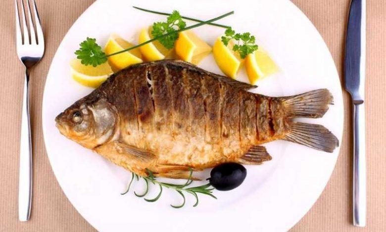 فوائد أكل السمك للحامل