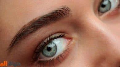 الأطعمة المفيدة للعيون