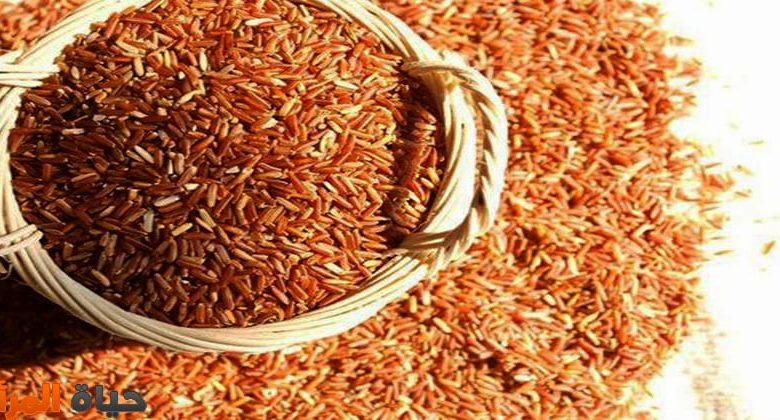 فوائد الأرز البني لصحة الجسم