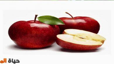 فوائد التفاح الأحمر قبل النوم